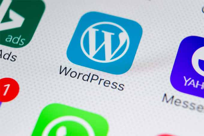 How you Can Maintain the WordPress Website?