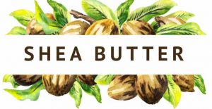 How Long is Shea Butter Good For