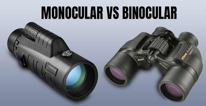 What Is The Difference Between Monocular Cues And Binocular Cues?