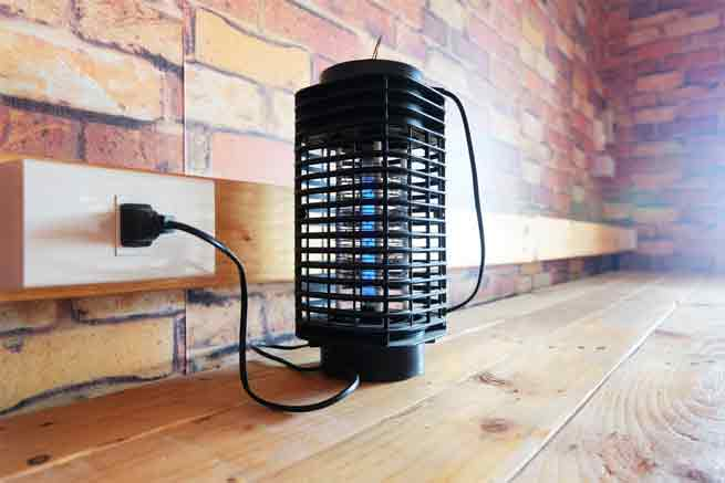 Read more about the article How to Build the Perfect Bug Zapper